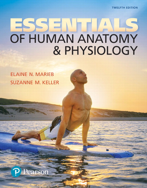 Pearson - Essentials of Human Anatomy & Physiology Plus Mastering ...