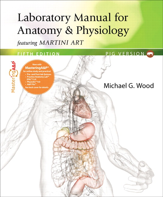Anatomy and Physiology Homework Help   The Princeton Review