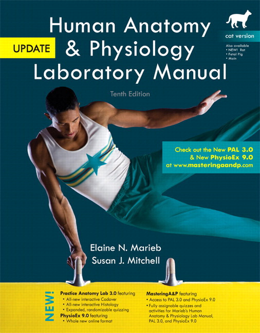 Dorable Human Anatomy And Physiology Pearson Motif - Anatomy And ...