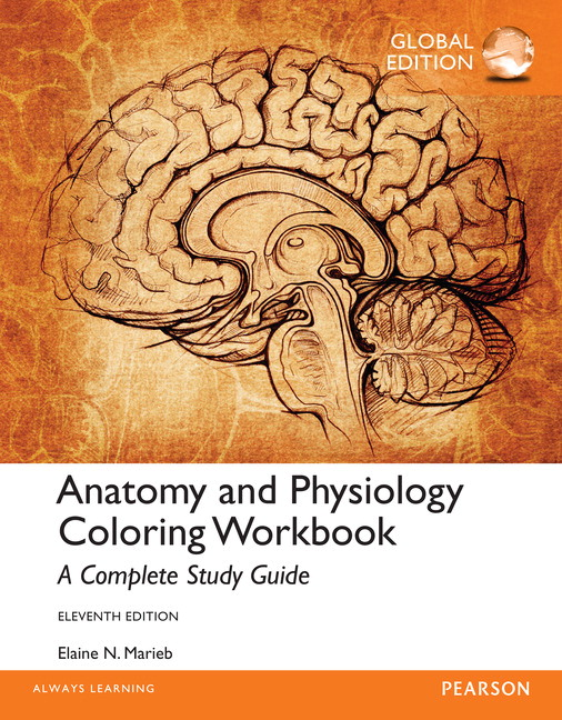 Pearson - Anatomy and Physiology Coloring Workbook: A Complete Study ...