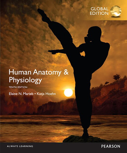 Pearson - Human Anatomy & Physiology, Global Edition, 10/E - Elaine ...