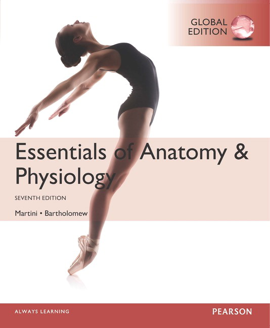 Pearson tests for human body systems ebook answer keys array pearson essentials of anatomy u0026 physiology global edition 7 e rh catalogue pearsoned co fandeluxe Gallery