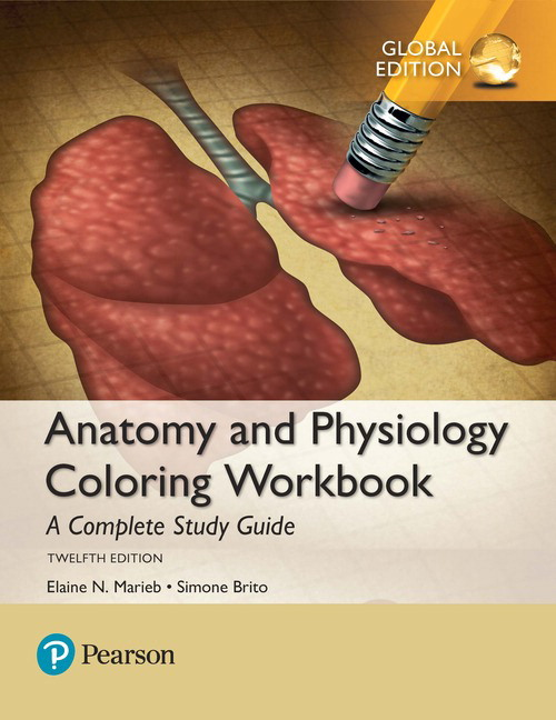 View Larger Cover Anatomy And Physiology Coloring Workbook A Complete Study Guide