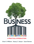Business: A Practical Introduction, 1/e [book cover]