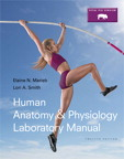 Human Anatomy & Physiology Laboratory Manual, Fetal Pig Version, 12/e [book cover]