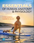 Essentials of Human Anatomy & Physiology, 12/e [book cover]