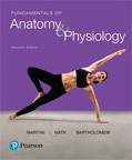 Fundamentals of Anatomy & Physiology, 11/e [book cover]