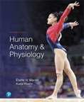 Human Anatomy & Physiology, 11/e [book cover]