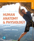 Human Anatomy & Physiology Laboratory Manual: Making Connections, Main Version, 2/e [book cover]