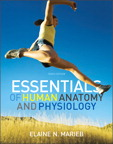 Essentials of Human Anatomy & Physiology, 10/e [book cover]
