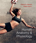 Human Anatomy & Physiology, 9/e [book cover]