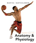 Essentials of Anatomy & Physiology, 6/e [book cover]