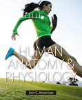 Human Anatomy & Physiology, 1/e [book cover]