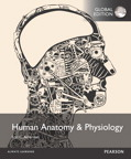 Human Anatomy & Physiology, Global Edition, 1/e [book cover]