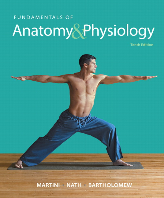 product image for Fundamentals of Anatomy & Physiology