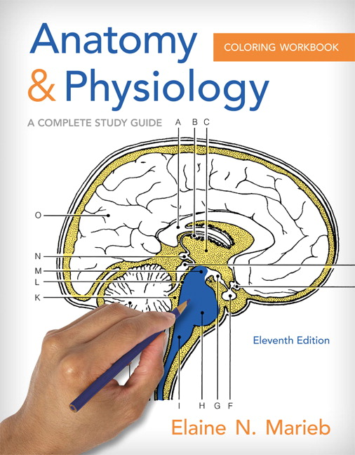 product image for Anatomy and Physiology Coloring Workbook: A Complete Study Guide